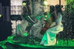 Принцессы со скрипками